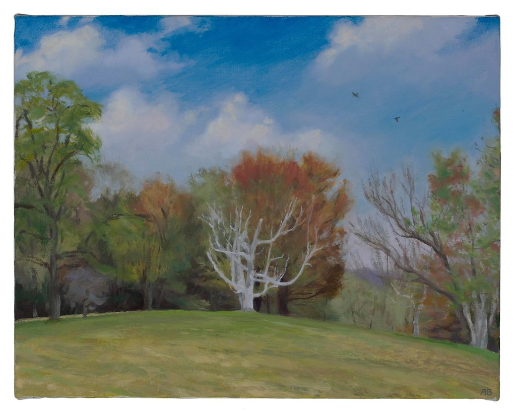The Clark's Pasture with Candelabra Birch