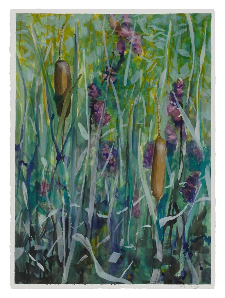 Cattails and Purple Loosestrife